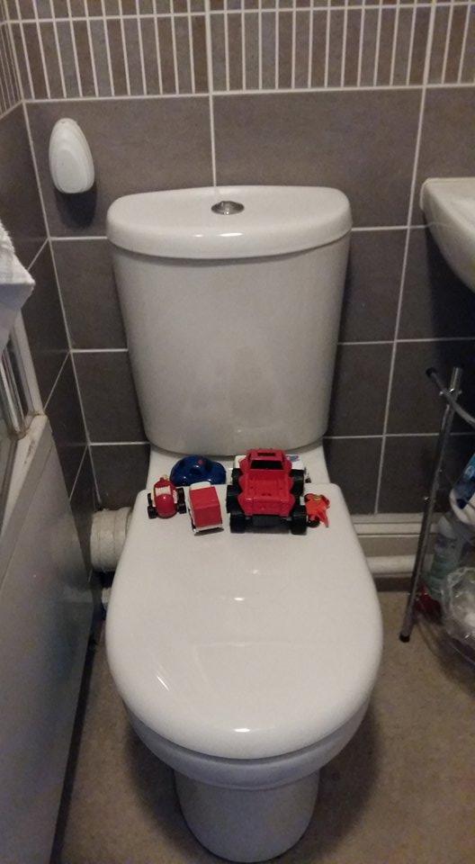 toilet pic
